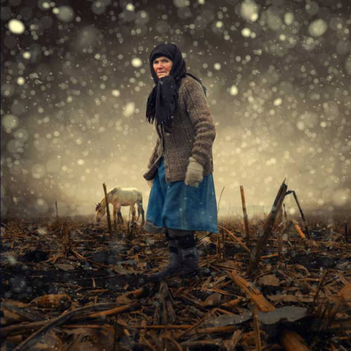 FineArt_Strangers_057_First_Snow