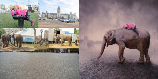 photoshop_howitsmade_elephant_005_city_ride